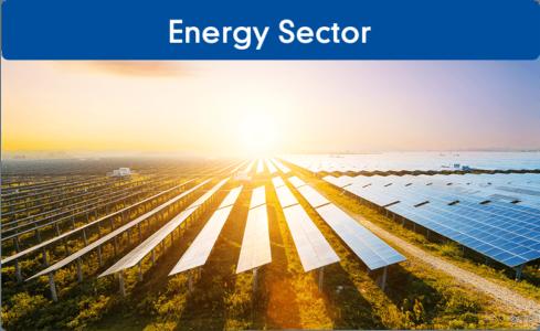 friedberg_energy-sector